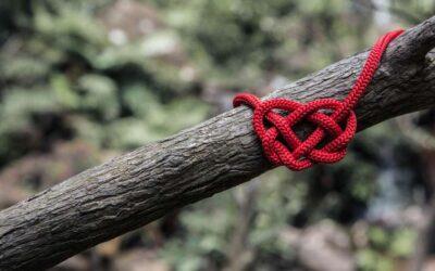 Liefde, waarom zo ingewikkeld?
